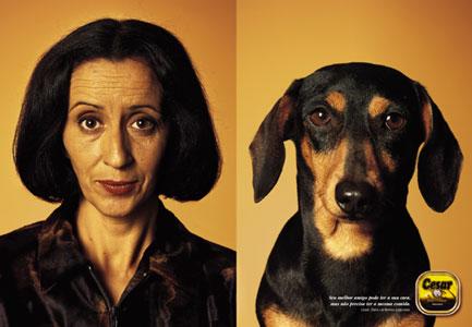 Não confunda! A sua esquerda está o cão, a direita a dona do cão