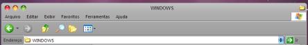 Janela do Windows XP com botões iguais do Leopard